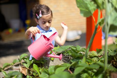 A child waters some plants
