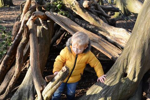 Child building a den