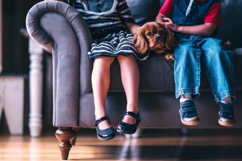 Children and dog on sofa