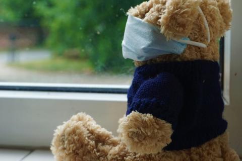 Teddy in a mask