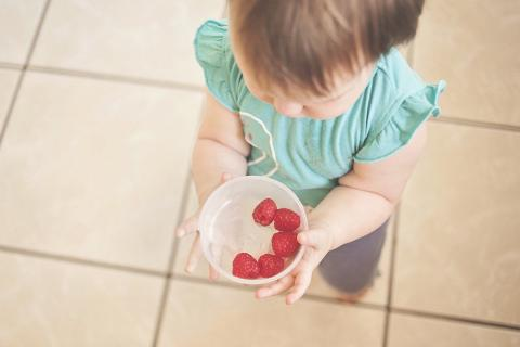Toddler and berries