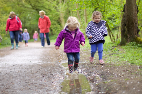 if you go into the woods, fun in the woods, fun woodland activities for you and your child