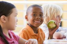 Little boy eating an apple at lunchtime