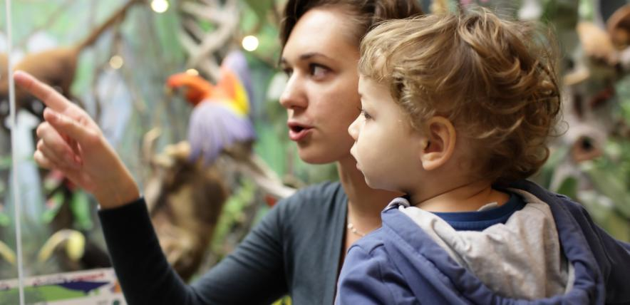 museums for toddlers, toddler-friendly, educational